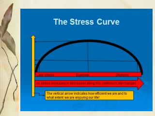 Stress curve & kayak