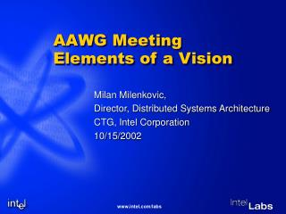 AAWG Meeting Elements of a Vision