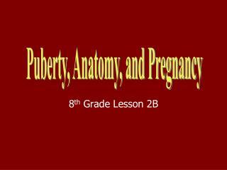 8 th  Grade Lesson 2B