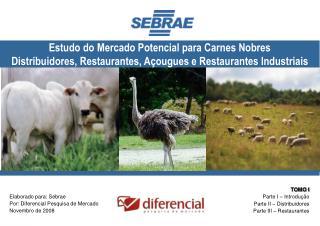 Elaborado para: Sebrae Por: Diferencial Pesquisa de Mercado Novembro de 2008
