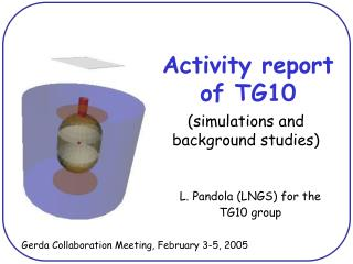 Activity report of TG10