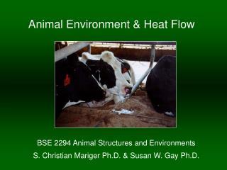 Animal Environment & Heat Flow