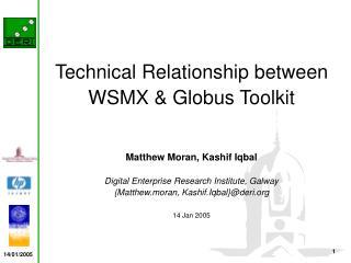 Technical Relationship between WSMX & Globus Toolkit Matthew Moran, Kashif Iqbal