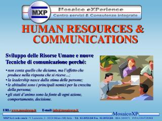 MosaicoXP