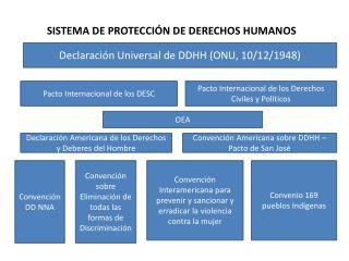 SISTEMA DE PROTECCI�N DE DERECHOS HUMANOS