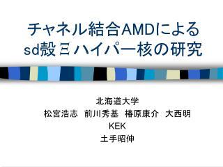 ?????? AMD ??? sd ? ? ????????