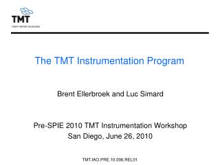 The TMT Instrumentation Program