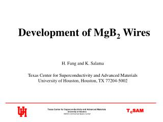 Development of MgB 2  Wires