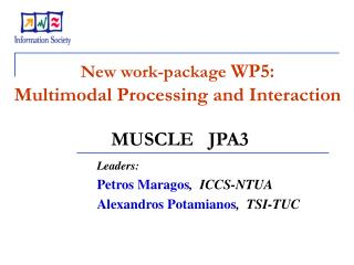 New work - package  WP5: Multimodal Processing and Interaction MUSCLE   JPA3