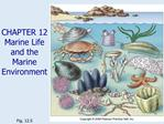 CHAPTER 12  Marine Life and the Marine Environment