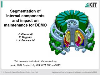 Segmentation of internal components and impact on maintenance for DEMO F. Cismondi E. Magnani