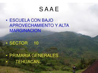 S A A E