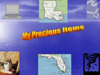My Precious Items