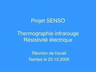 Projet SENSO Thermographie infrarouge Résistivité électrique
