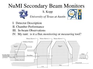 NuMI Secondary Beam Monitors