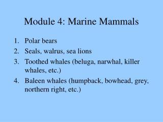 Module 4: Marine Mammals