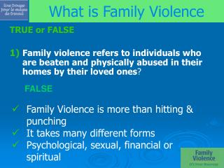 What is Family Violence