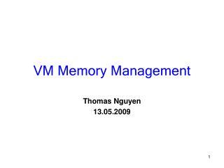 VM Memory Management