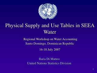 Ilaria Di Matteo United Nations Statistics Division