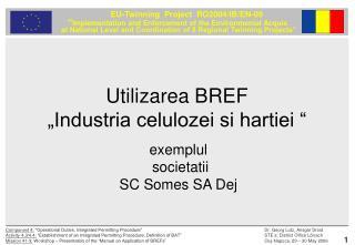 Utilizarea BREF  �Industria celulozei si hartiei �