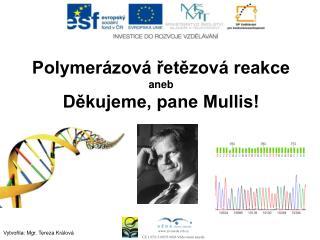 Polymerázová řetězová reakce aneb Děkujeme, pane Mullis!