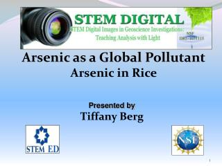 Arsenic as a Global Pollutant Arsenic in Rice