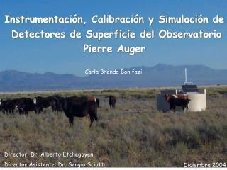 Instrumentaci �n, Calibraci�n y Simulaci�n de  Detectores de Superficie del Observatorio