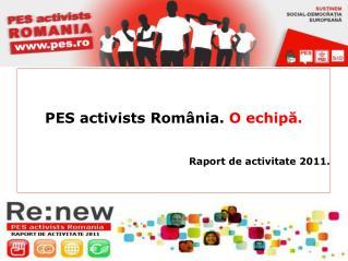 PES activists România.  O echipă. Raport de activitate 2011.