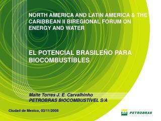 Maite Torres J. E. Carvalhinho PETROBRAS BIOCOMBUST�VEL S/A