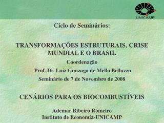 Ciclo de Seminários: TRANSFORMAÇÕES ESTRUTURAIS, CRISE MUNDIAL E O BRASIL Coordenação