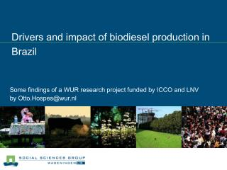 Drivers and impact of biodiesel production in Brazil