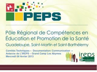 Comités Techniques « Documentation/ Communication »  Antenne de L'IREPS – Grand Camp Les Abymes