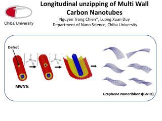 Graphene Nanoribbons(GNRs)