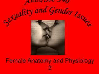 Female Anatomy and Physiology 2
