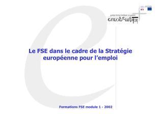 Le FSE dans le cadre de la Stratégie européenne pour l'emploi
