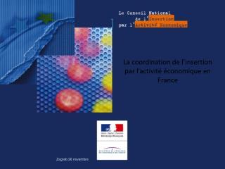 La coordination de l'insertion par l'activité économique en France