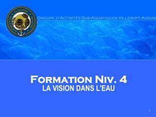 Formation Niv. 4 LA VISION DANS L'EAU
