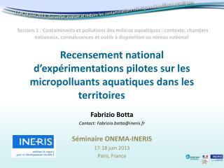 Fabrizio Botta Contact: Fabrizio.botta@ineris.fr Séminaire ONEMA-INERIS 17-18 juin 2013