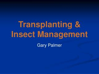 Transplanting &  Insect Management
