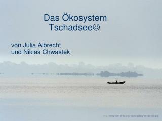Das  kosystem          Tschadsee  von Julia Albrecht und Niklas Chwastek