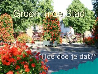 Groen in de Stad