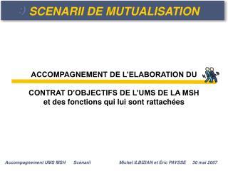 SCENARII DE MUTUALISATION
