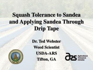 Squash Tolerance to Sandea and Applying Sandea Through Drip Tape