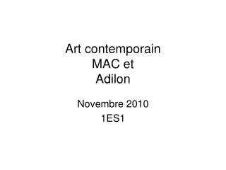 Art contemporain  MAC et  Adilon