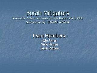 Borah Mitigators Remedial Action Scheme for the Borah West Path Sponsored by: IDAHO POWER