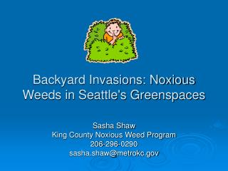 Backyard Invasions: Noxious Weeds in Seattles Greenspaces