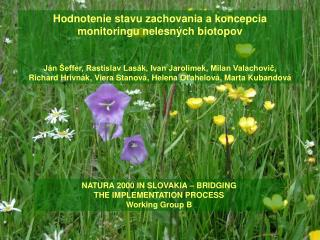 Hodnotenie  stavu zachovania  a k oncepcia monitoringu  n elesných biotopov