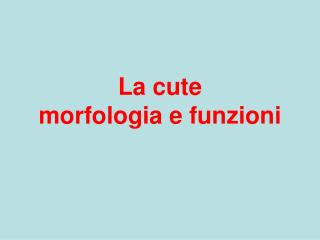 La cute morfologia e funzioni