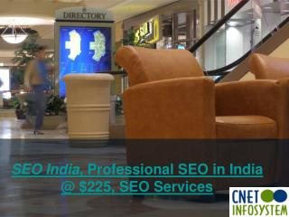 SEO India, Professional SEO in India @ $225, SEO Services in