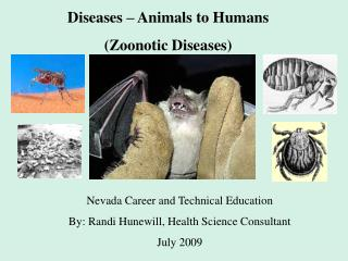 Diseases   Animals to Humans Zoonotic Diseases